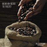 bean+to+bean